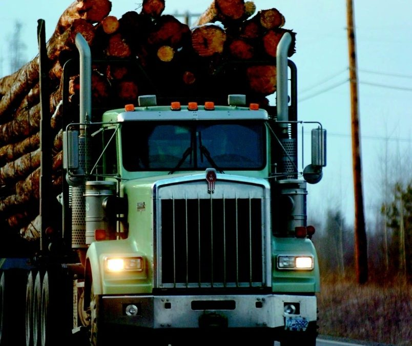 Lifestyle, low pay behind trucker shortage, local expert says